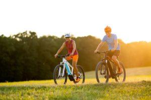 Happy Couple E-bike